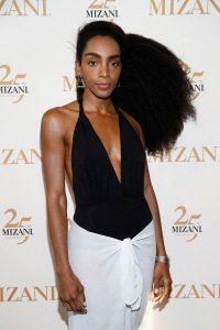 NEW YORK, NY - JUNE 20:  Model and Editor in Chief of Urban Bush Babes Cipriana Quann attends the MIZANI 25th Anniversary Celebration and Styling Renaissance Launch hosted by Global Artistic Director and Celebrity Stylist Cesar Ramirez and Campaign Models Chanel Iman, Maria Borges, Grace Mahary and Heidy De la Rosa on June 20, 2016 in New York City.  (Photo by Brian Ach/Getty Images for MIZANI)
